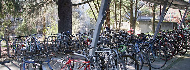 bicycles parked at a bike rack