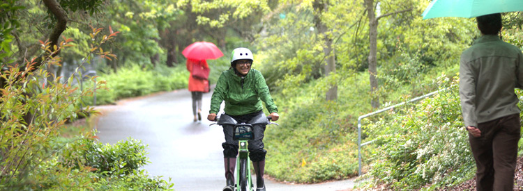 bicyclist biking in the rain along the burke-gilman trail and pedestrians walking with umbrellas