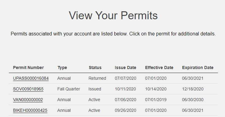 screenshot of account permits with permit details