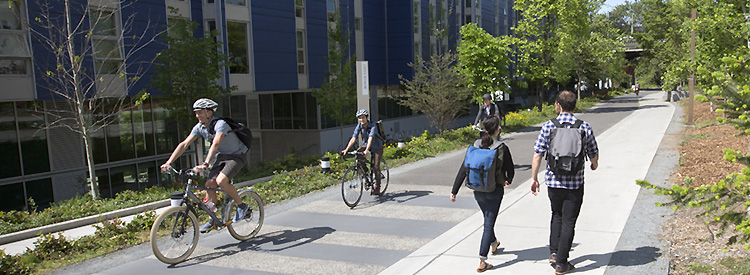 bicyclists and walkers on burke-gilman trail on uw campus