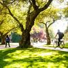 uw quad with a bicyclist and pedestrians